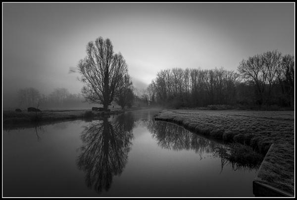 Reflections in B&W by Dwaller