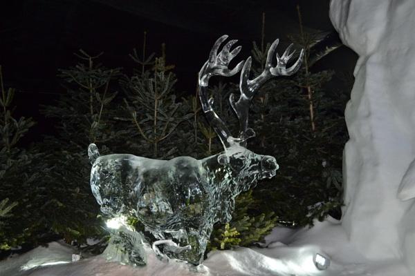 Frozen by xGei8ht