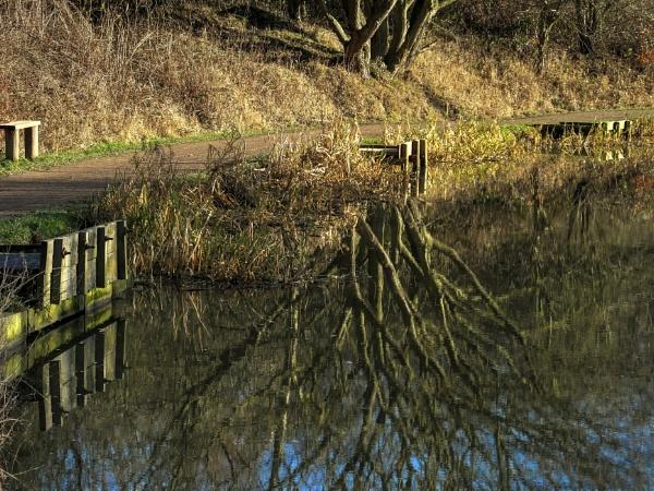 Reflections by ianmoorcroft