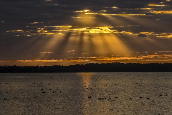 Sunset Sunrays by jbsaladino