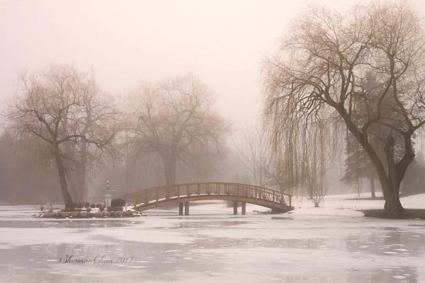Foggy Pond by manicam