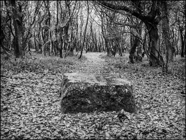 Stone by bwlchmawr