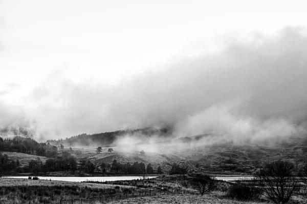 misty day by Webbs