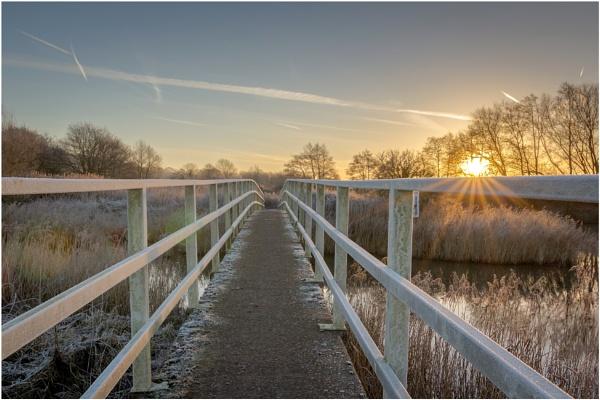 Frosty Morning Walk. by Satlight