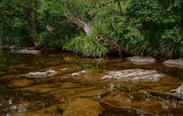 Cedar Creek Seclusion