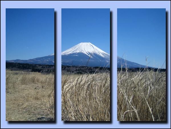 Mt. Fuji by laura1
