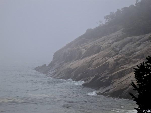 Landscape #3  Maine Mist by handlerstudio