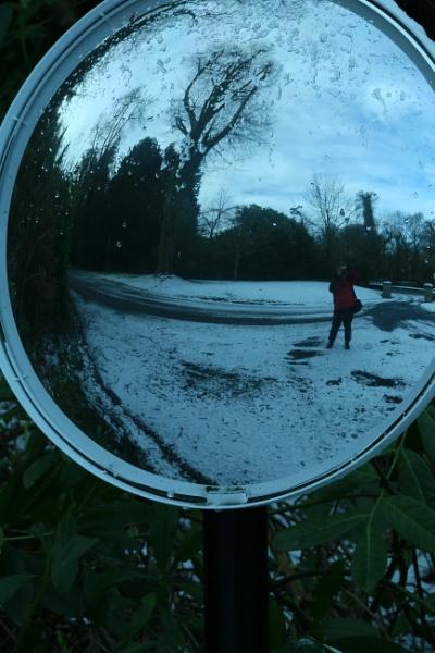 Reflections by gunner44
