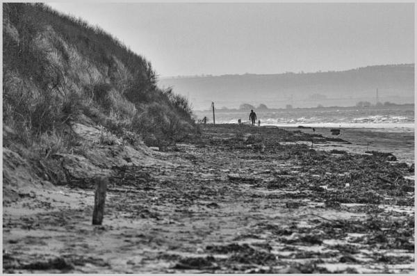 Lone Walker by BobDraper