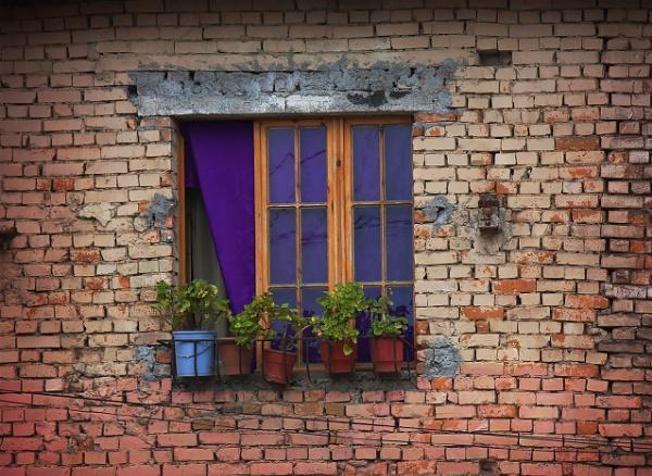 The  Window by nklakor
