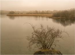 Winter lake.