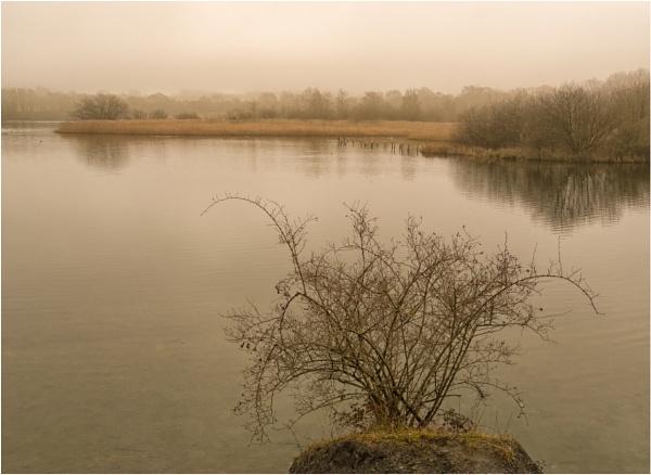 Winter lake. by franken