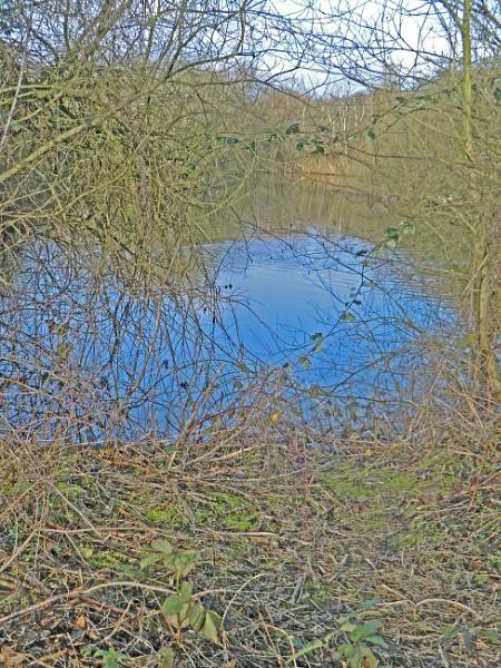Small Lake by Gypsyman