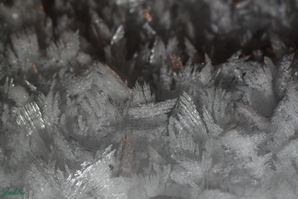 Frosty by jaktis