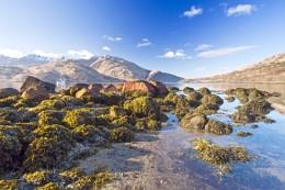 Loch Etive and Ben Cruachan