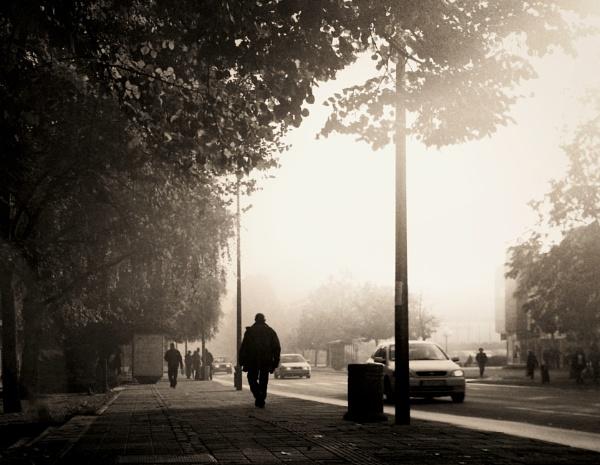 A morning walking by MileJanjic