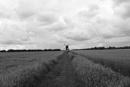 Windmill by Vferri4