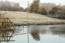 Frozen canal.