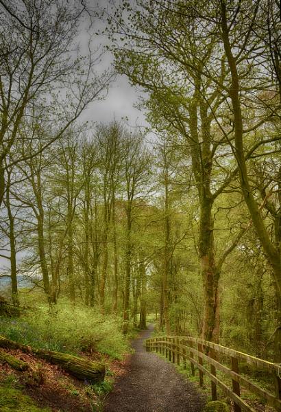 Colzium Estate,Kilsyth,Scotland.