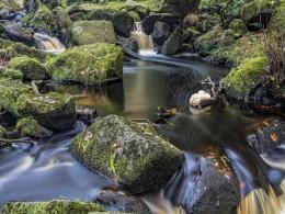 Photo : Padley Gorge