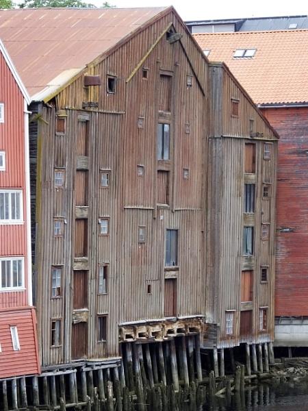 Norwegian wood by renoops