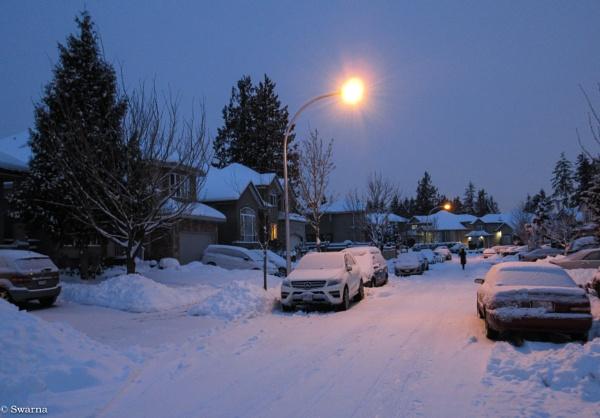 Snow again - Surrey BC by Swarnadip
