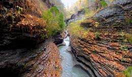 Landscape #10 The Gorge and Watkins Glen