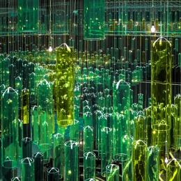 Green Gravity