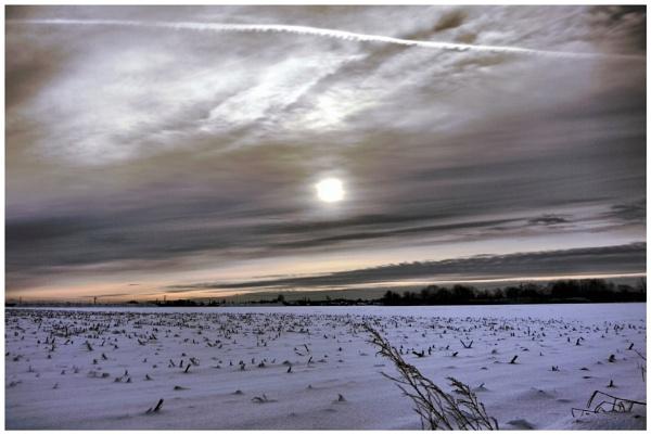 Mid-morning light by dukes_jewel