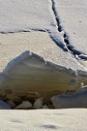Ice Sculpture by Joline