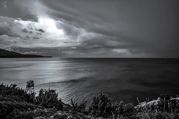Brewed Rainstorm by nonur