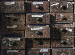 Carpenter's Case of Drawers
