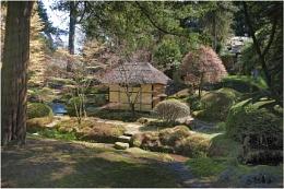 Japanese Garden Tatton Park
