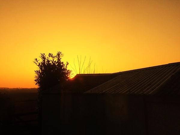 Glorious Morning by freewilluk