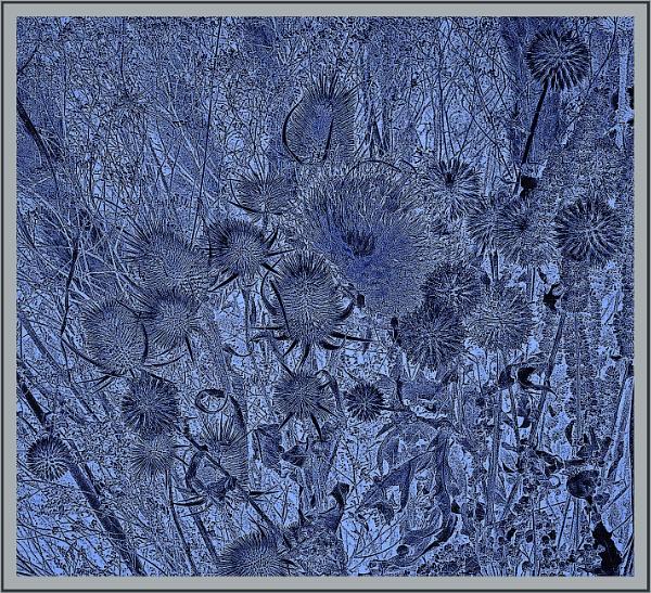 autumnal in winter by RichardNiglas