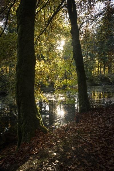 Druid Loch by TrotterFechan