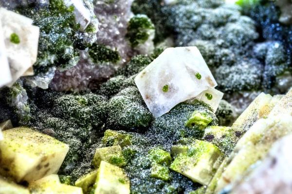 Minerals in biofilm
