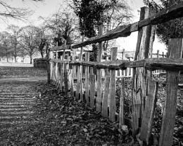 Fence in Winter Sunlight