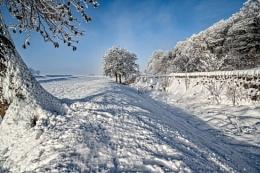 snowy backwalk