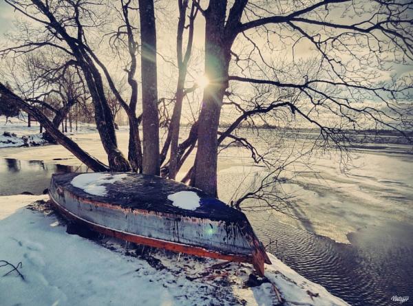 Winter or spring?.. by Zenonas