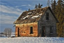 The Old Homestead. by MalcolmM