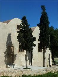 cypress shadows