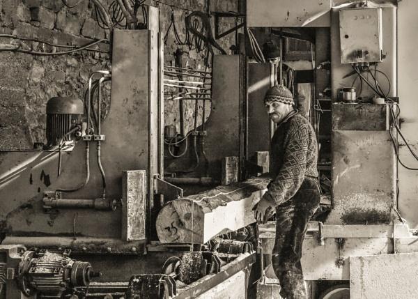 Heavy Duty Vertical Log Sawmill by nonur