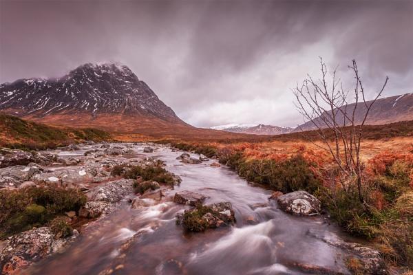Bleak Winter in the Glens by pink