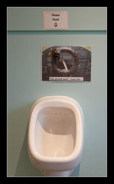 Fire to Flush