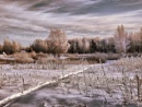 Winter/ by vikma19