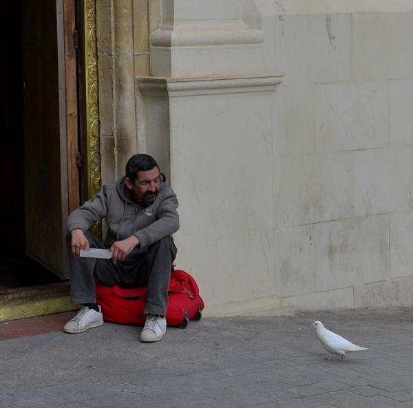 Beggars by Shedboy