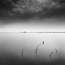 Serenity by Diggeo
