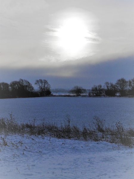 Snow on the fields in the morning