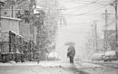 Winter in the city XXVIII by MileJanjic